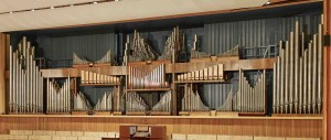 SBC02_ORGAN_05 cropped