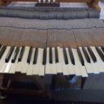 Keyboards (1)