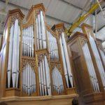 front of organ