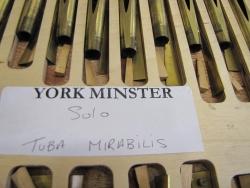 York Tuba Mirabilis shallots (2)